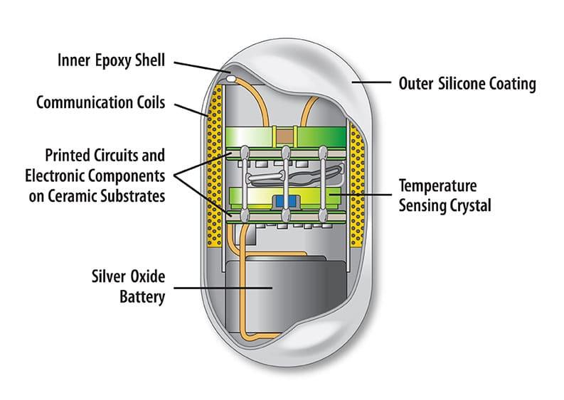 web-CorTemp-Pill-Sensor-Cutaway-Callouts
